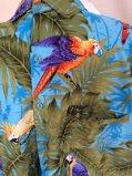 GetAttachment parrot